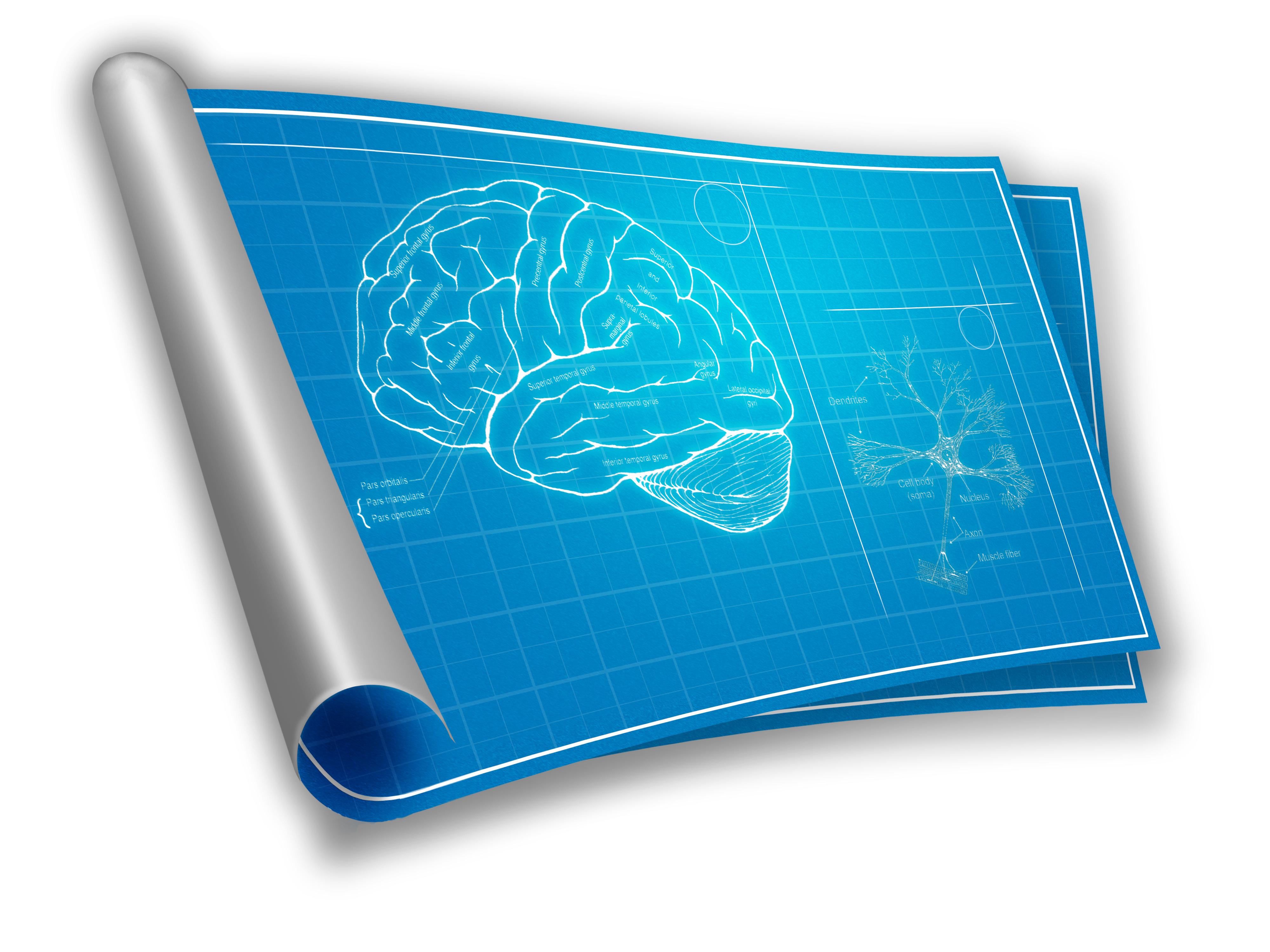 Seven levels human development program online series beabove shutterstock62918872 malvernweather Images